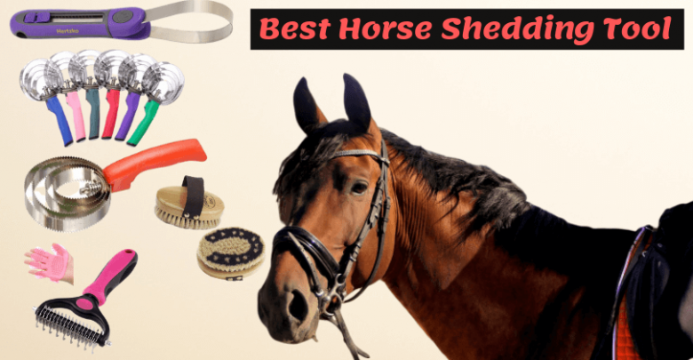 Best Horse Shedding Tool