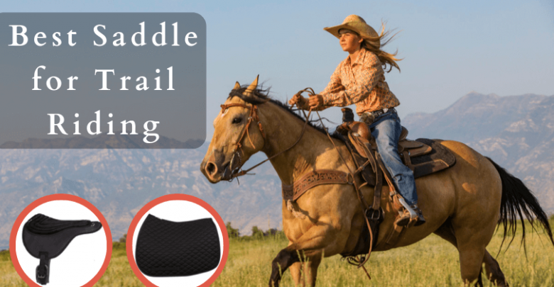 Best Saddle for Trail Riding