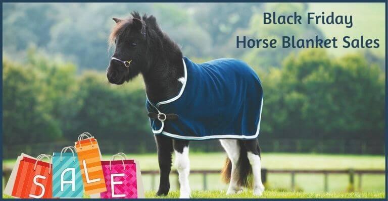 Black Friday Horse Blanket Sales