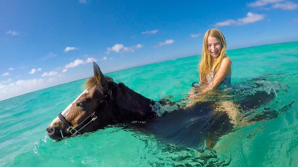 Can Horses Swim With A Rider