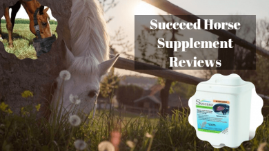 Horse Supplement (1)