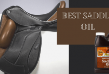 Best Saddle Oil