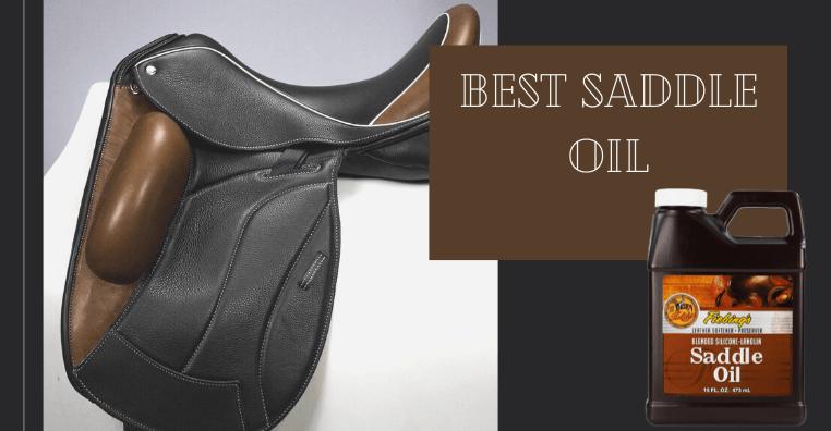 Best Saddle Oil